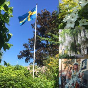 Sveriges flagga idag Nationaldagen, Blomsterkornell, vit Wisteria och Min dotter Victoria som student