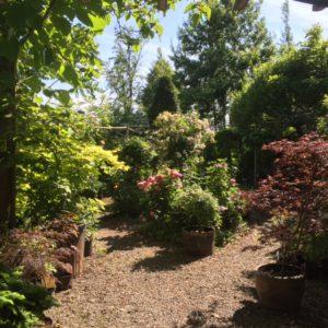 Miljöbild från vårt garden center.