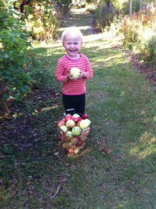 Kolla mormor vilket stort äpple jag hittade!